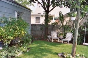 backyard06