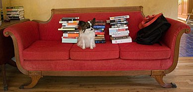 couch_dog_books